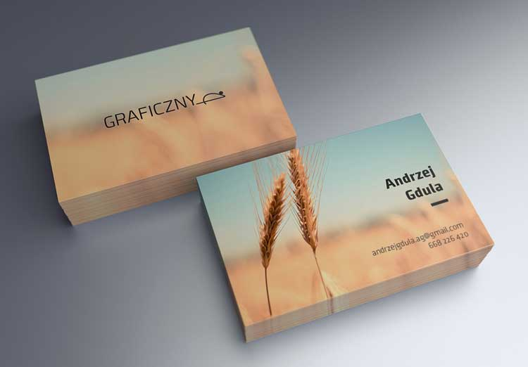 55+ Free business card mockup