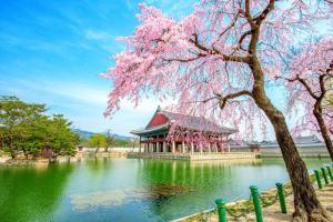 Nikmati Keseruan Tour ke Korea Selatan Dengan Vendor Terbaik dan Terpercaya