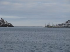 165 - The 'Narrows' - the entrance to Newfoundland Harbour