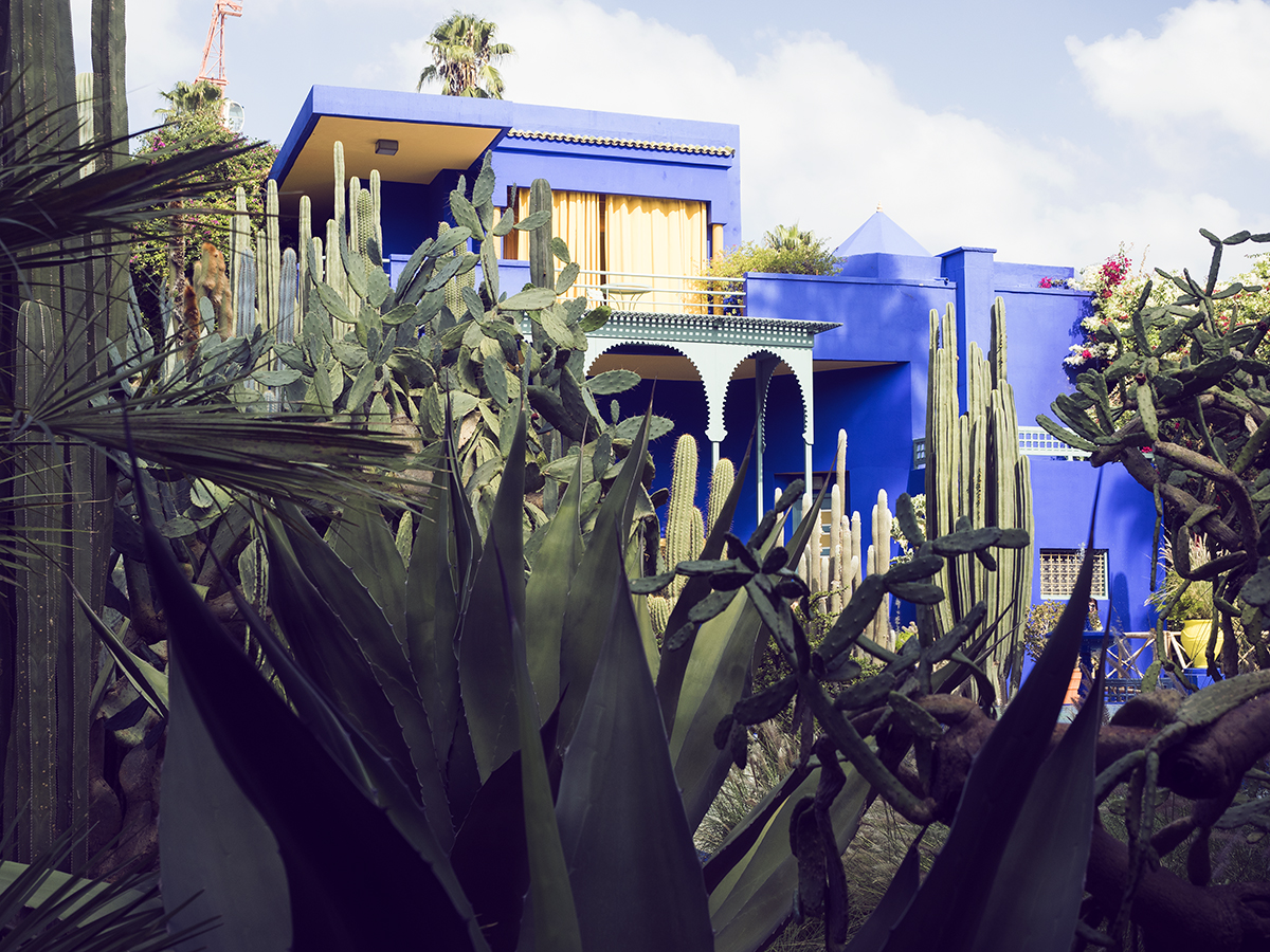 Morocco travel diary Inspiring Wit yves saint laurent jardin majorelle