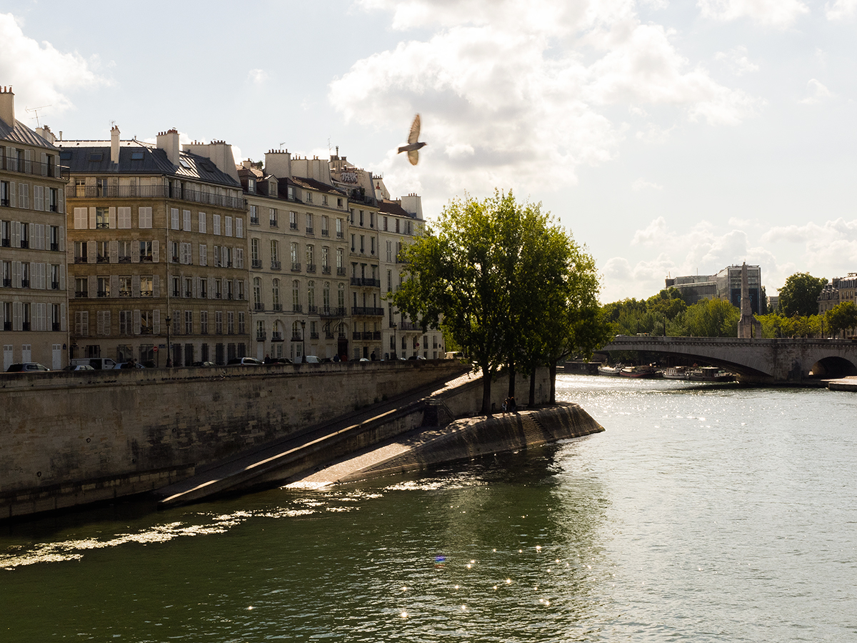 Ultimate Paris travel guide, architecture along Seine, Inspiring Wit