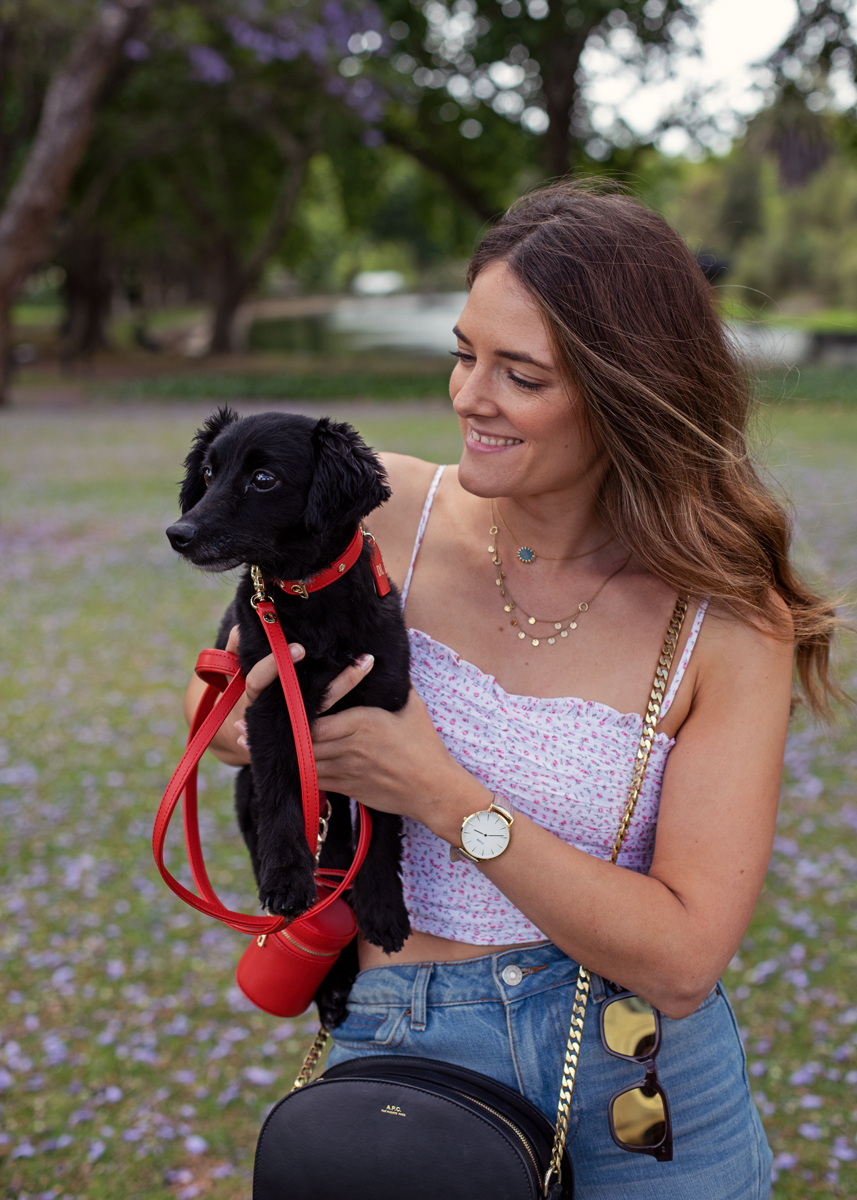 Christmas gift guide 2018 Perth with d'Artagnan wearing Tommy and Bella dog collar and Jenelle from Inspiring Wit in Hyde Park