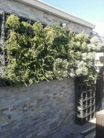 Jardin de pared