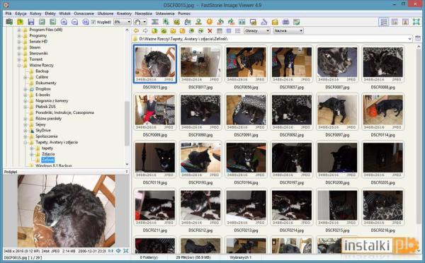 Faststone Image Viewer 7.5 - Download - Instalki.pl
