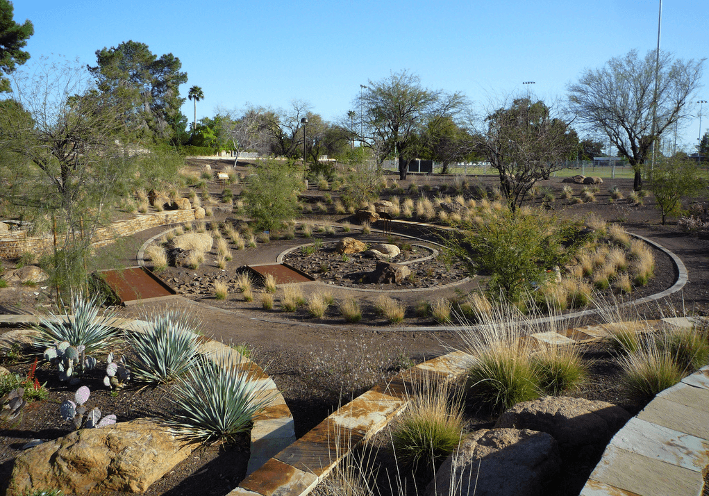 Xeriscaping Ideas: How To Xeriscape Your San Diego Yard ... on Xeriscape Backyard Designs  id=98127