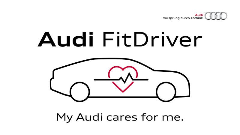 auto-fit-driver