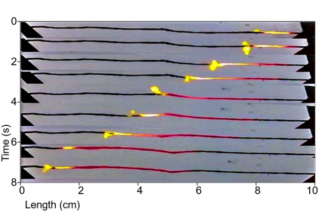 mit-carbon-nanotubes