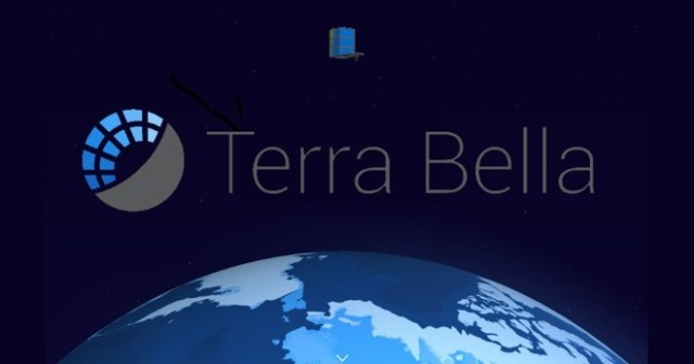 alphabet-sells-terra-bella