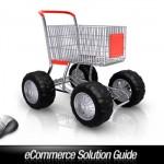 Beginner's Guide to E-Commerce Solution