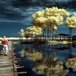 Enjoy The 80+ Moments Of Reflective Photography