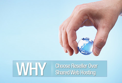 Why You Should Avoid Shared Web Hosting