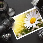 22 Reliable Sources to Get Commercial and Free Micro Stock Photos