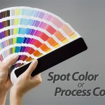 Spot or Process Color? Essential Guidelines