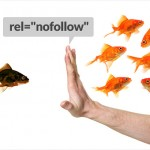 The NoFollow Tag – When and How to Use it to Prevent Google from Penalizing You
