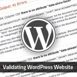 An Insightful Checklist of Validating Your WordPress Website