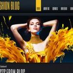 Best Ways to Conquer Fashion World: Top 20 Most Stylish WordPress Templates