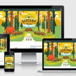 5 Most Asked Questions about Responsive Website Design
