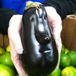 95 Things With Faces You'll Have To Look At Twice To Understand!