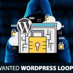 20+ Most Wanted WordPress Loop Hacks