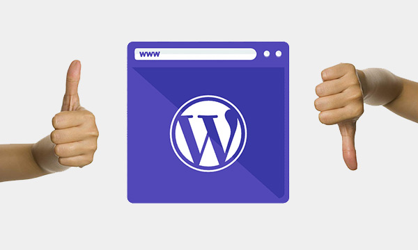 Behind The Scenes and Unpopular Insights about WordPress