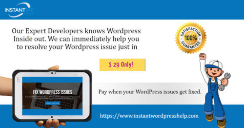 Fix WordPress Issues only for $29