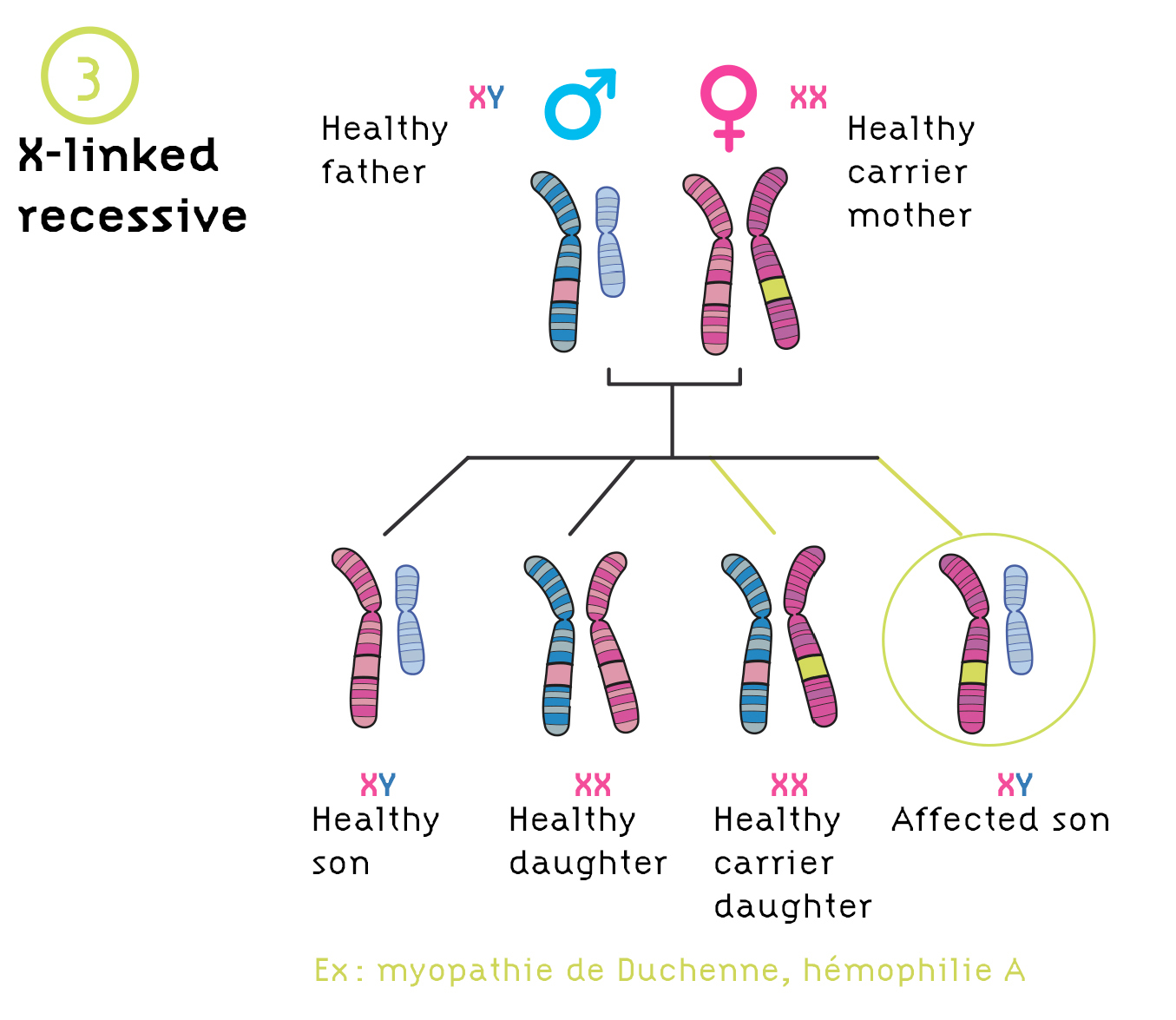 Genetic Disorder Definition