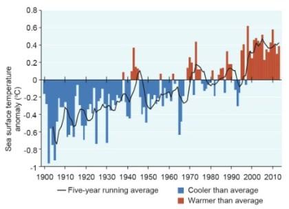temperatura%20do%20mar Mudança climática é a principal ameaça à Grande Barreira de Corais