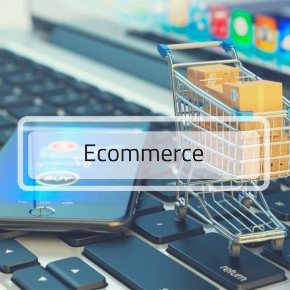Ecommerce. Construye páginas orientadas al Comercio Electrónico