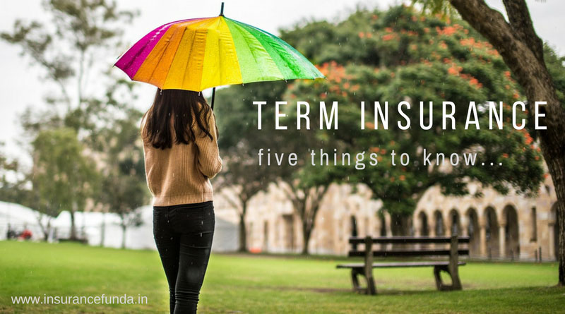 Term Life Insurance Policy every thing you should know