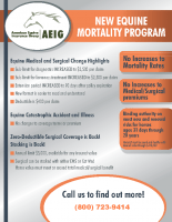 AEIG Mortality Flyer 0816