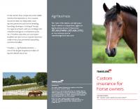 CP-4881 Horse Brochure