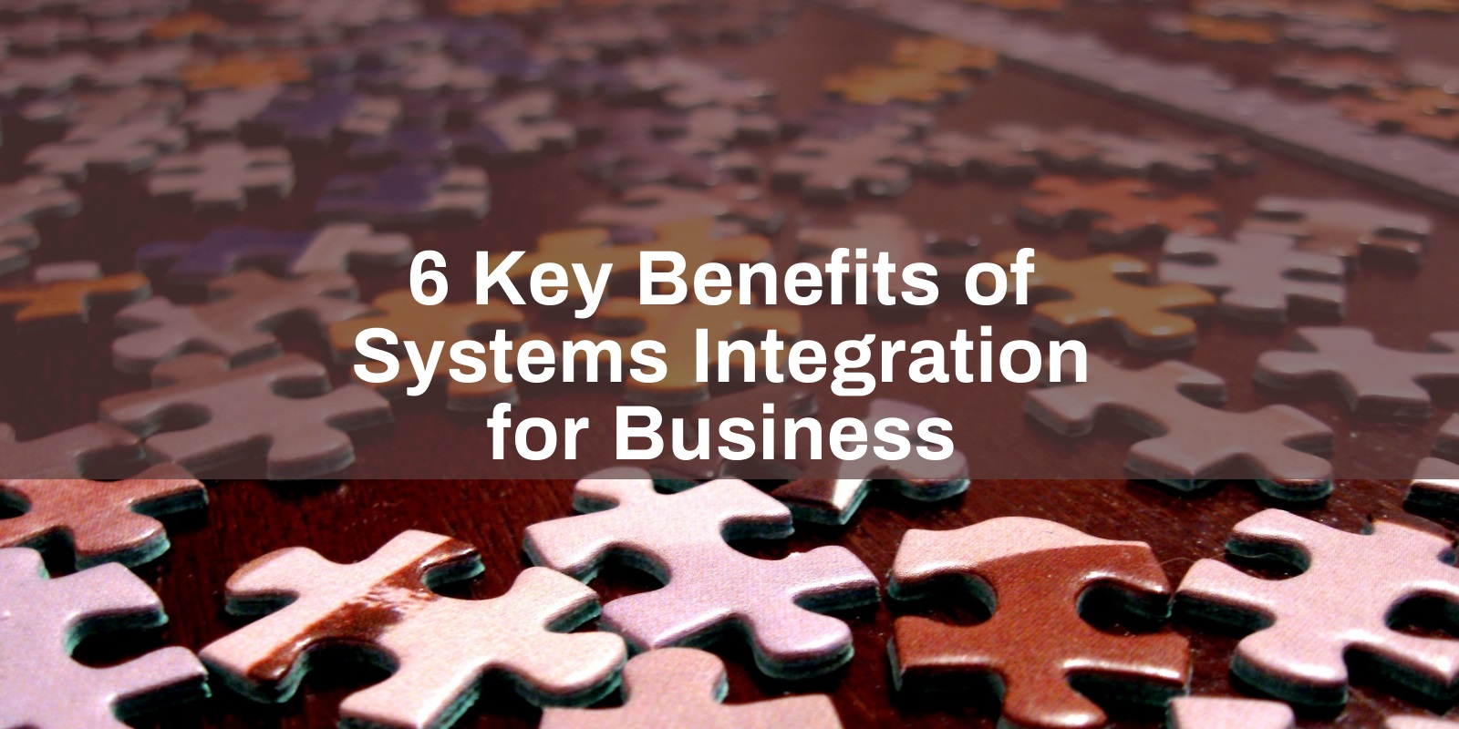 business systems integration benefits