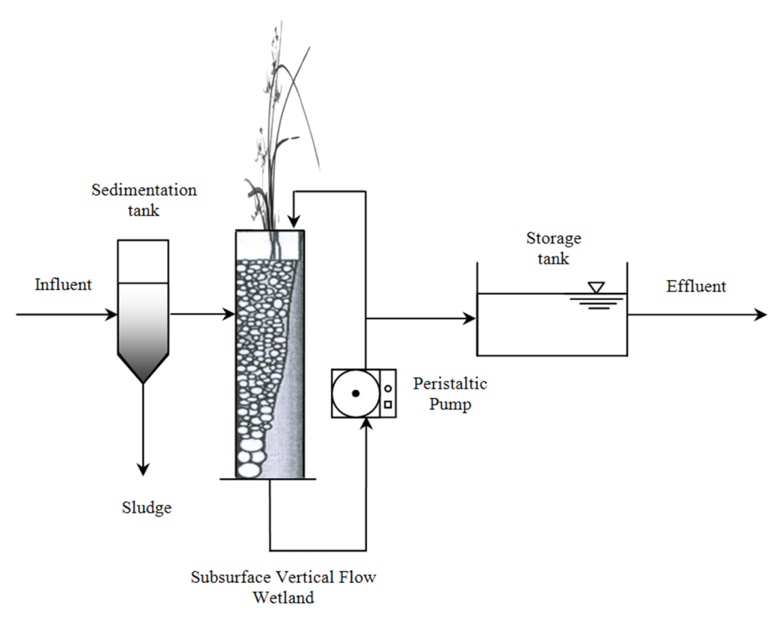 Nutrients And Organic Matter Removal In A Vertical Flow