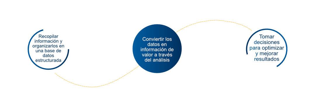 Reporting_digital_proceso