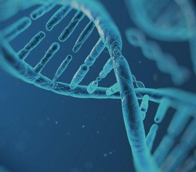 Graphical representation of a DNA strand