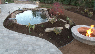 completed landscaping plan