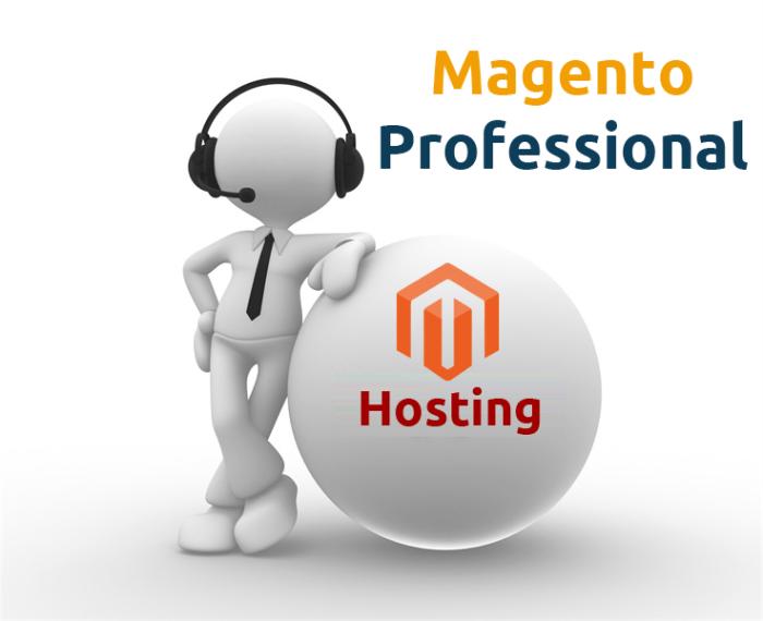 Magento Professional Hosting-0