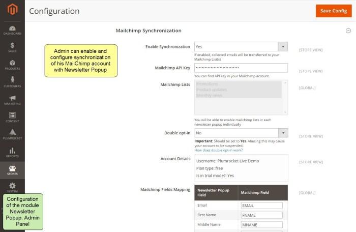 Nieuwsbrief Popup Extensie voor Magento 2-55