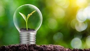 Solar irrigation solution named winner of Uganda Renewable Energy Fund