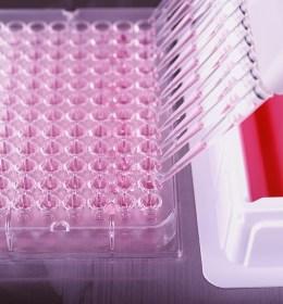 Cancer diagnostic company utilises endpoint security solution