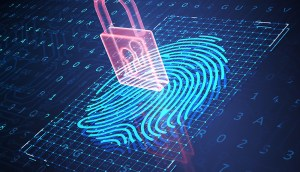 Tackling the trillion dollar identity fraud crises