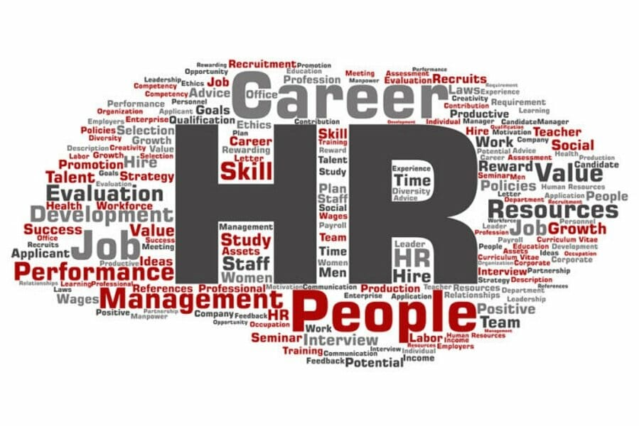 Why You Should Consider Career in HR and How to Pursue