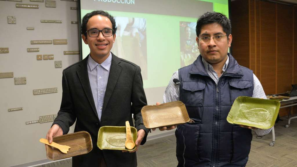 eco-friendly banana leaf plates