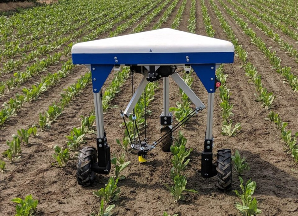 Meet Odd.Bot – The Weed-Pulling Robot That Uses No Chemicals