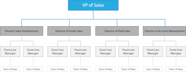 sales organizational structure