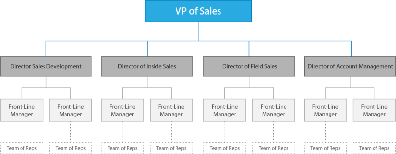 sales organizational structure