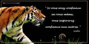 Confiance en Soi Goethe Intemotionnelle Intelligence Emotionnelle