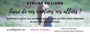 Atelier en ligne les emotions