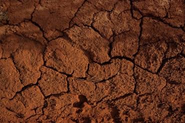 Características geológicas y biológicas de un terreno.