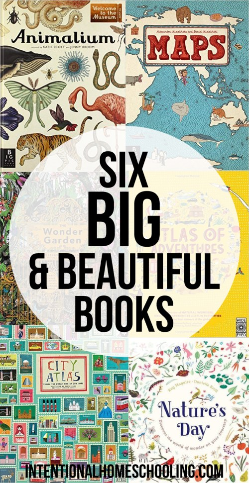 We love big books and we cannot lie! 6 Big and Beautiful books we love.